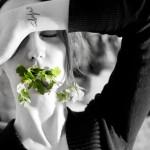365 Tage Projekt - Krieg & Liebe
