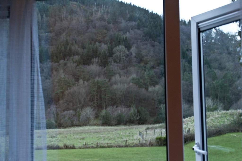 Glendalough Hotel View